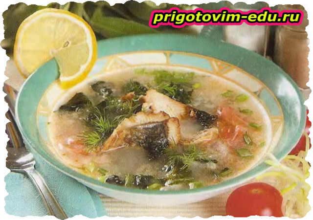 Рыбные щи со щавелем и шпинатом