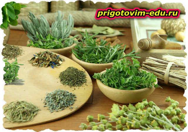 Пряные травы. Название и полезные свойства