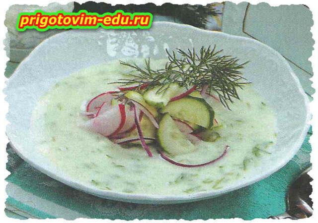 Сырный суп с огурцами и редисом